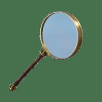 Magnifying Axe icon