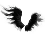 Shadow Wings icon png