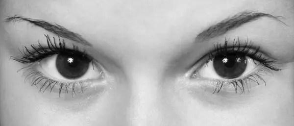 女性の目 眉毛
