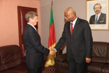 Development Partners of Cameroon