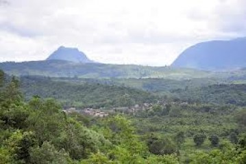 Cameroon Natural Resources