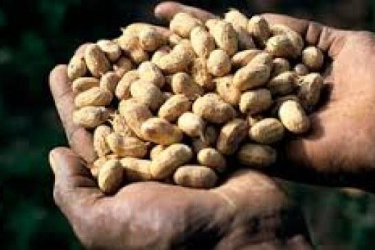 Mali's key exports