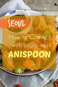 Anispoon