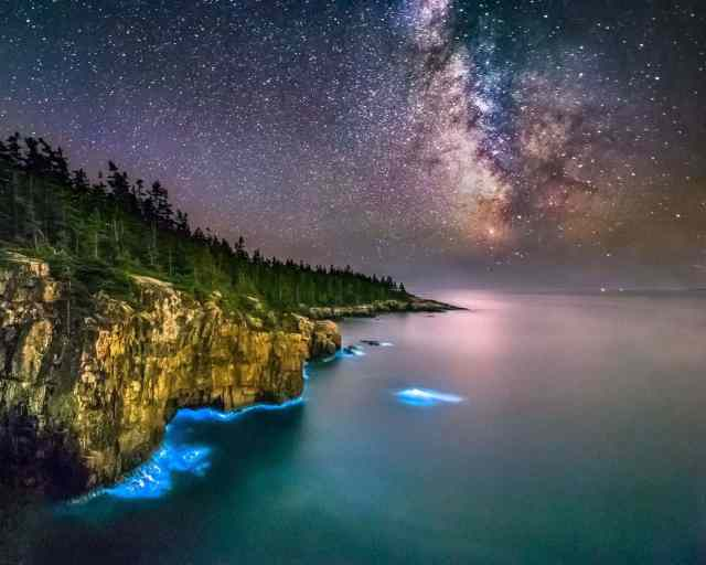 Bioluminescent Bay in Acadia Maine