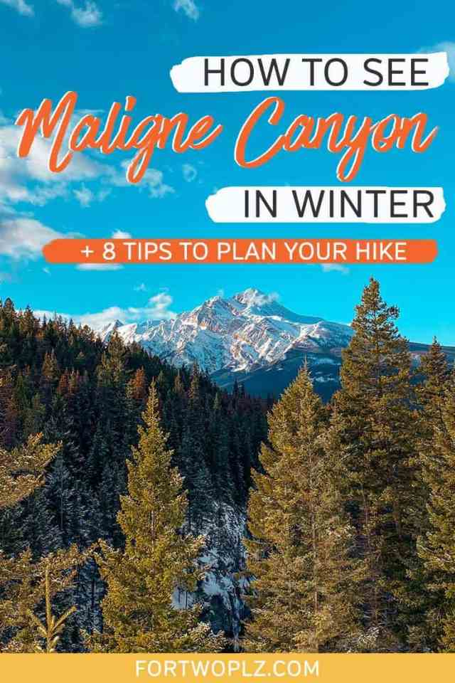 how to see maligne canyon in winter