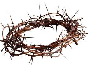 Between a Crown of Thorns and a Crown of Glory | FORTY SOMETHING FAITH