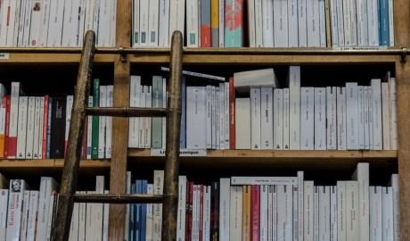 Prestatgeries plenes de llibres
