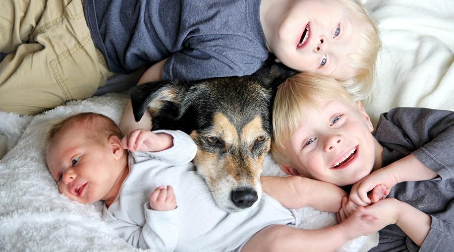 gos amb nens
