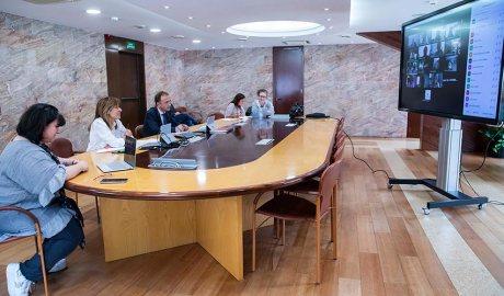 Marsol s'acomiada telemàticament del Consell d'infants del curs 2019-2020