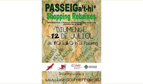 Cartell de l'activitat Passeiga-t'hi de la Seu d'Urgell