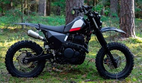 Una Honda NX650