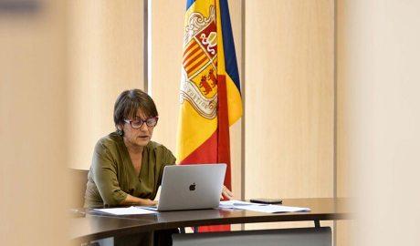 La síndica general, Roser Suñé, participant en una reunió telemàtica
