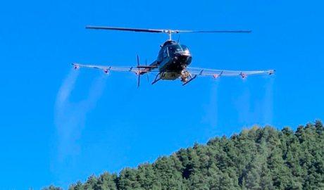 Helicòpter de tractament de la processionària