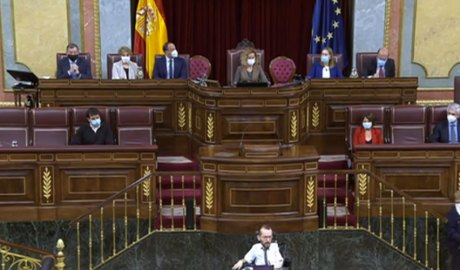 Echenique intervenint al Congreso de los Diputados