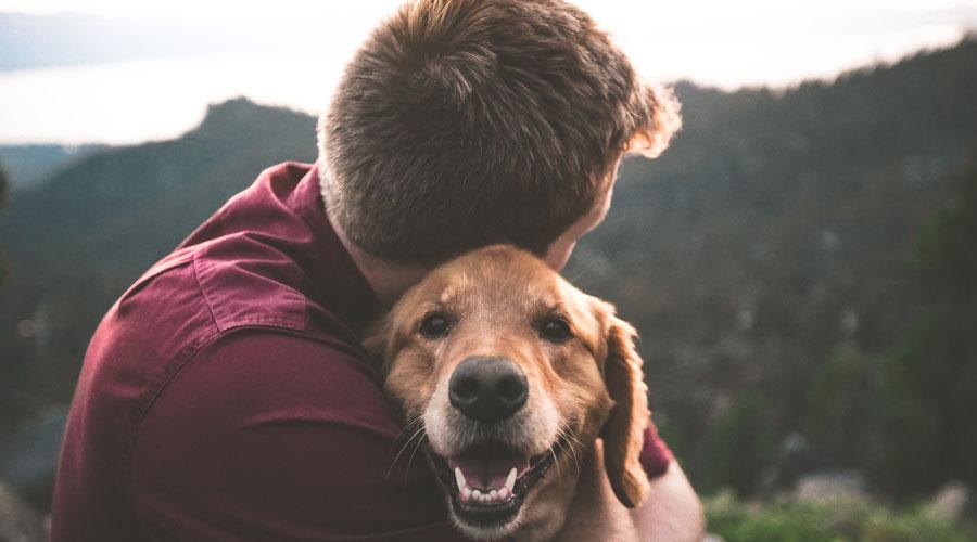 Un noi amb el seu gos
