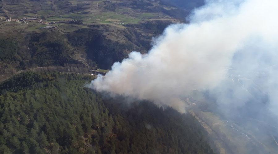 Incendi a Montellà i Martinet (Foto: Bombers de la Generalitat)