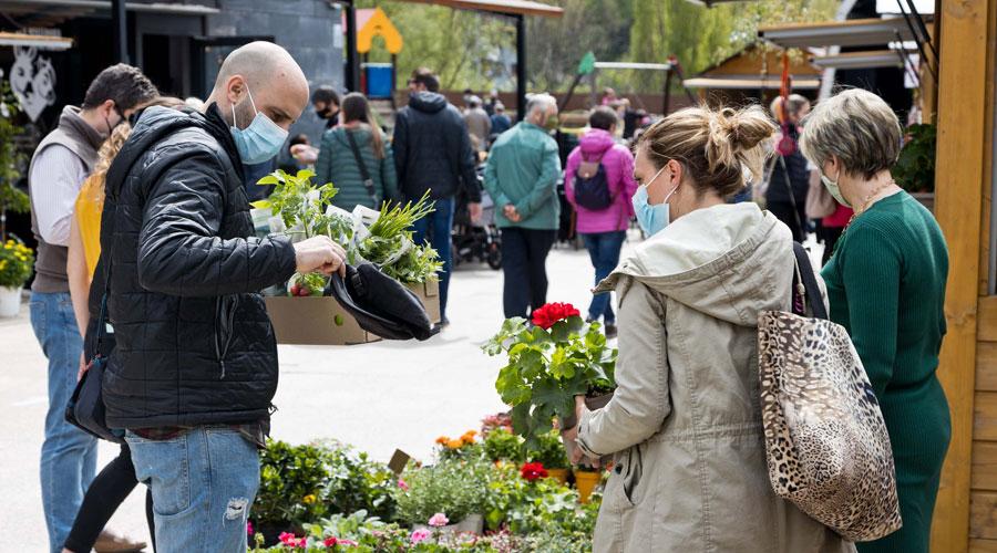 Gent comprant plantes i flors a Andoflora