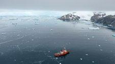 Mar antàrtic