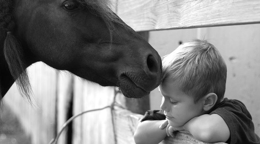 Nen amb un cavall