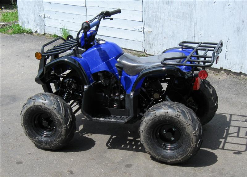 chinese atv glands in the neck and throat diagram 125cc i bought one don t pick on me ih8mud forum 4 medium jpg