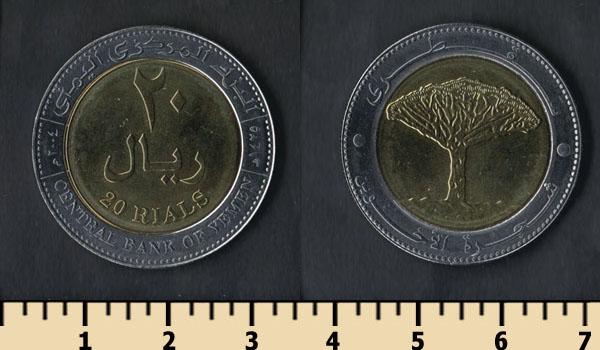 Драконовые деревья острова Сокотра 13