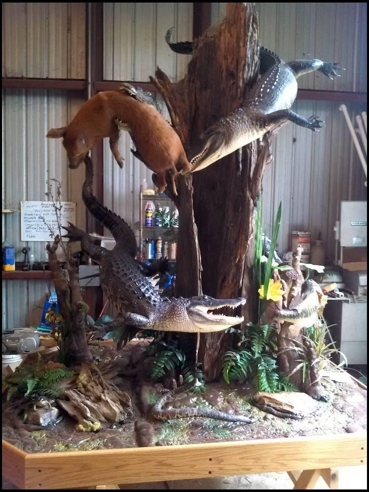 Gator mount ideas