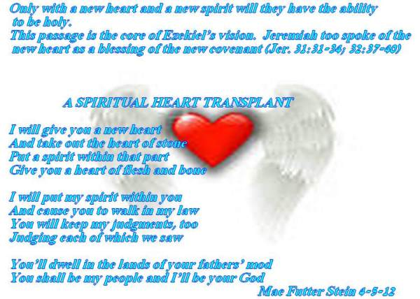 Spiritual Awakening: Let Your Heart Lead The Way!!!!   Spiritual