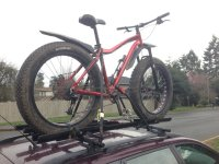 Roof racks for fat bikes?