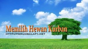 Hewan Qurban