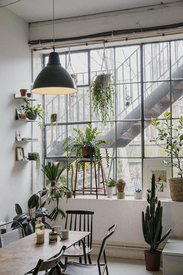 house-of-plants-1