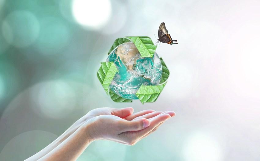 manos sosteniendo un globo terraqueo - bausra cero