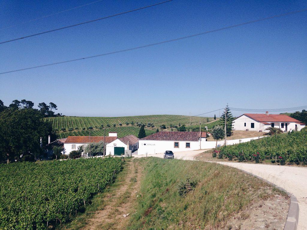Quinta de Chocapalha Estate