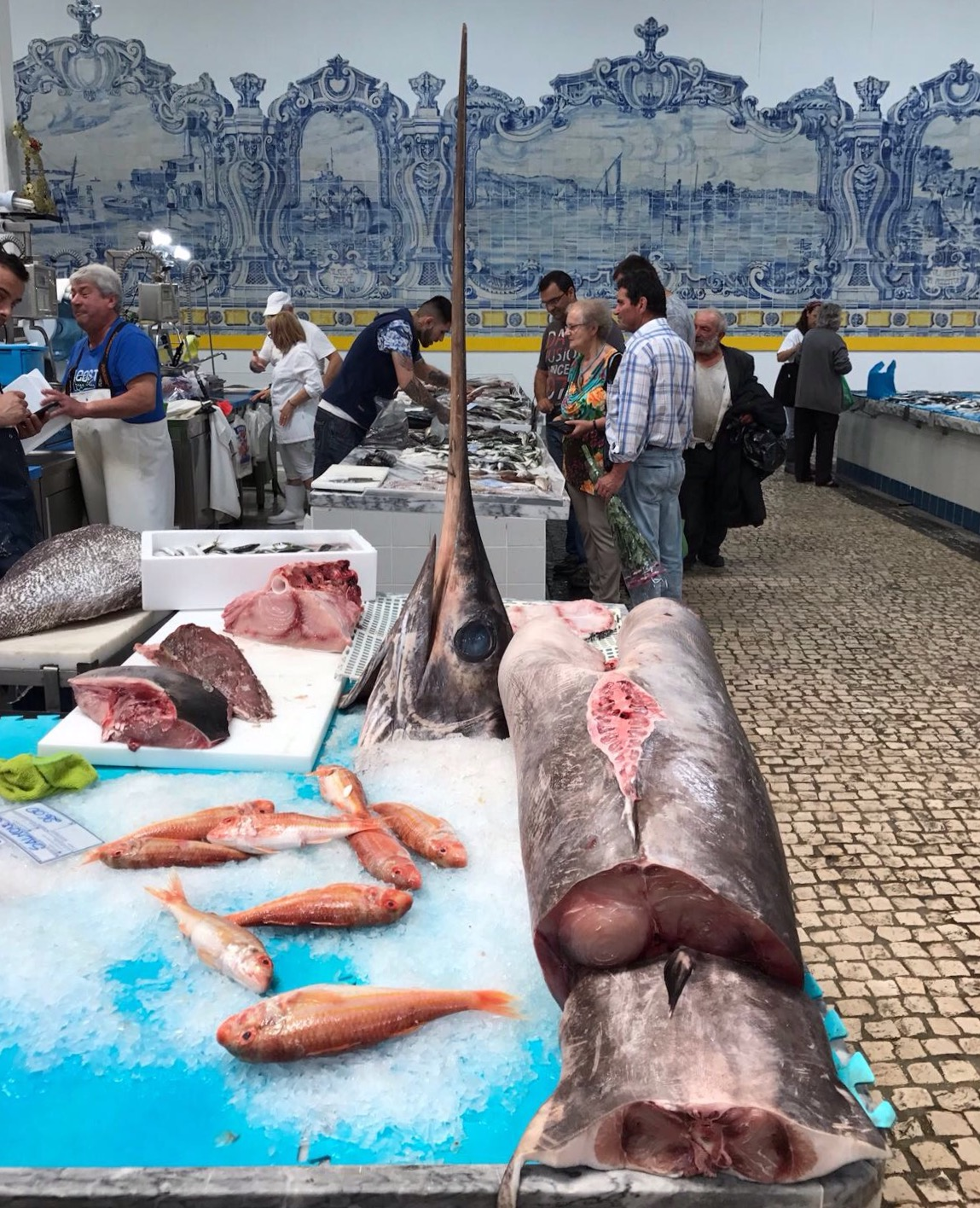 Setubal. Fish Market