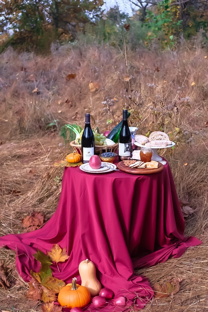 Fall Wine Tasting Picnic with red wines of the Loire Valley