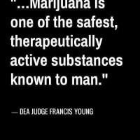 Is Marijuana really safe?