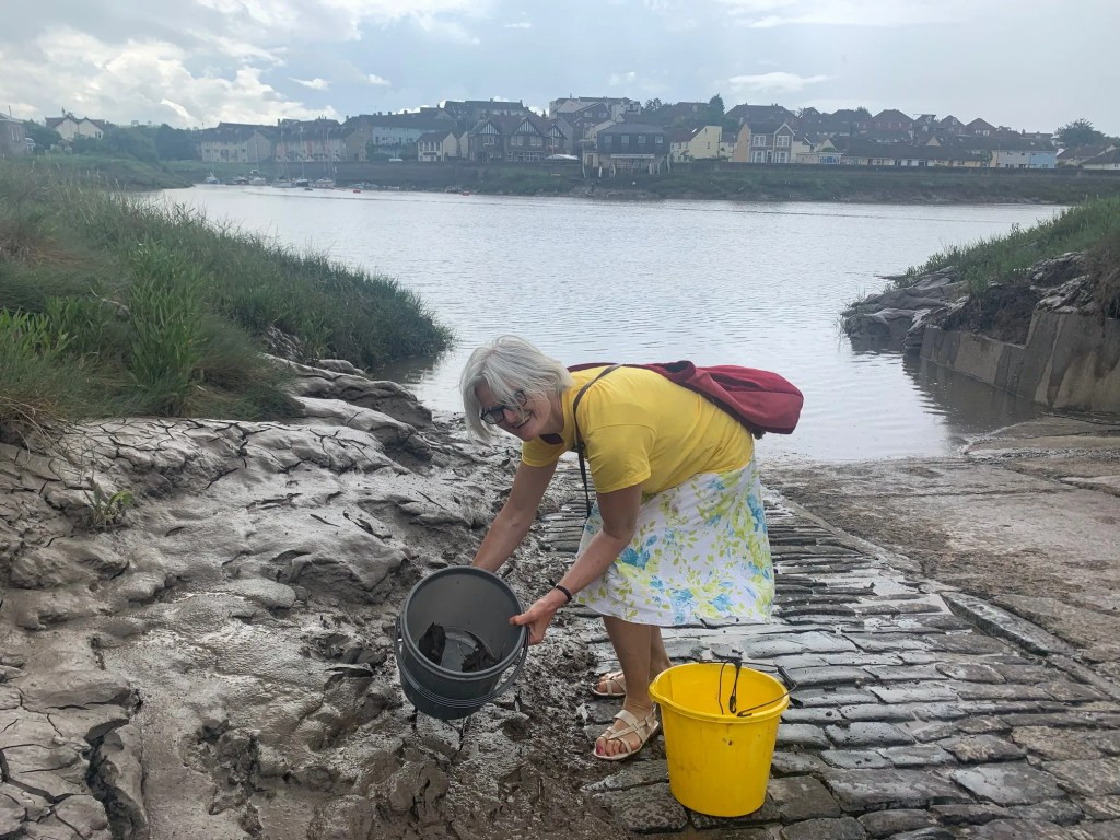 Tina Biggs collects some mud for her hydrogen research at University of Swansea