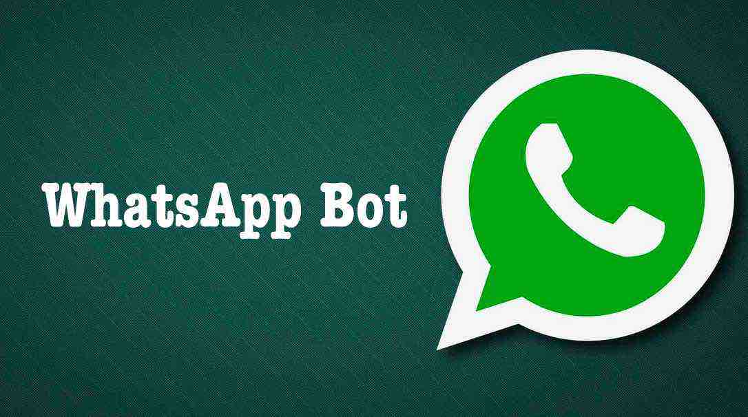 How To Use WhatsApp As A Search Engine | Activate WhatsApp ...
