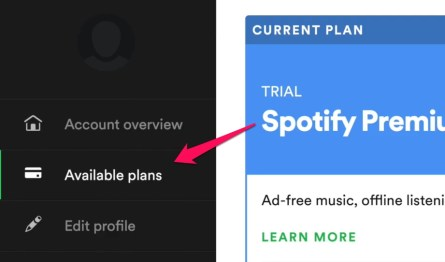 Spotify available plans