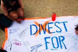 What are you divesting for?