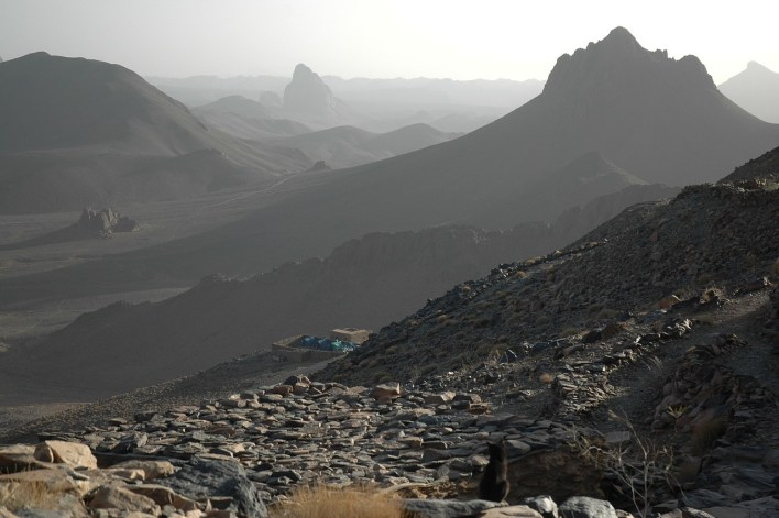 algeria-673777_1280.jpg