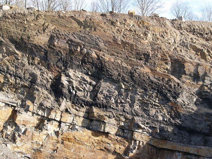 800px-Coal_seam