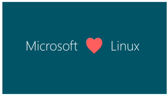 microsoft love linux picture