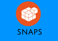 snap_logo_fossnaija