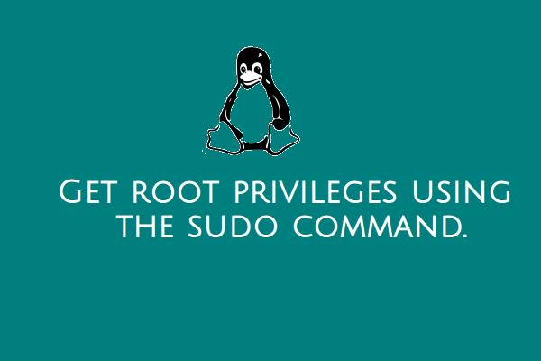 sudo_command_banner