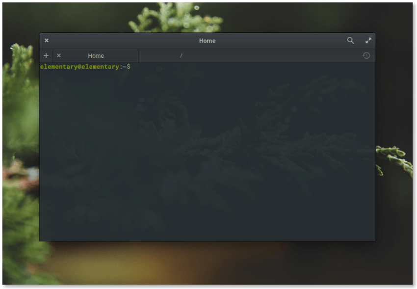 Elementary OS 0.4 Terminal