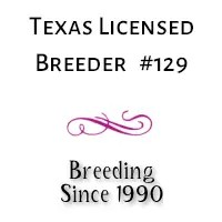 Licensed Dog Breeders in Texas