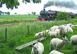 Railway view