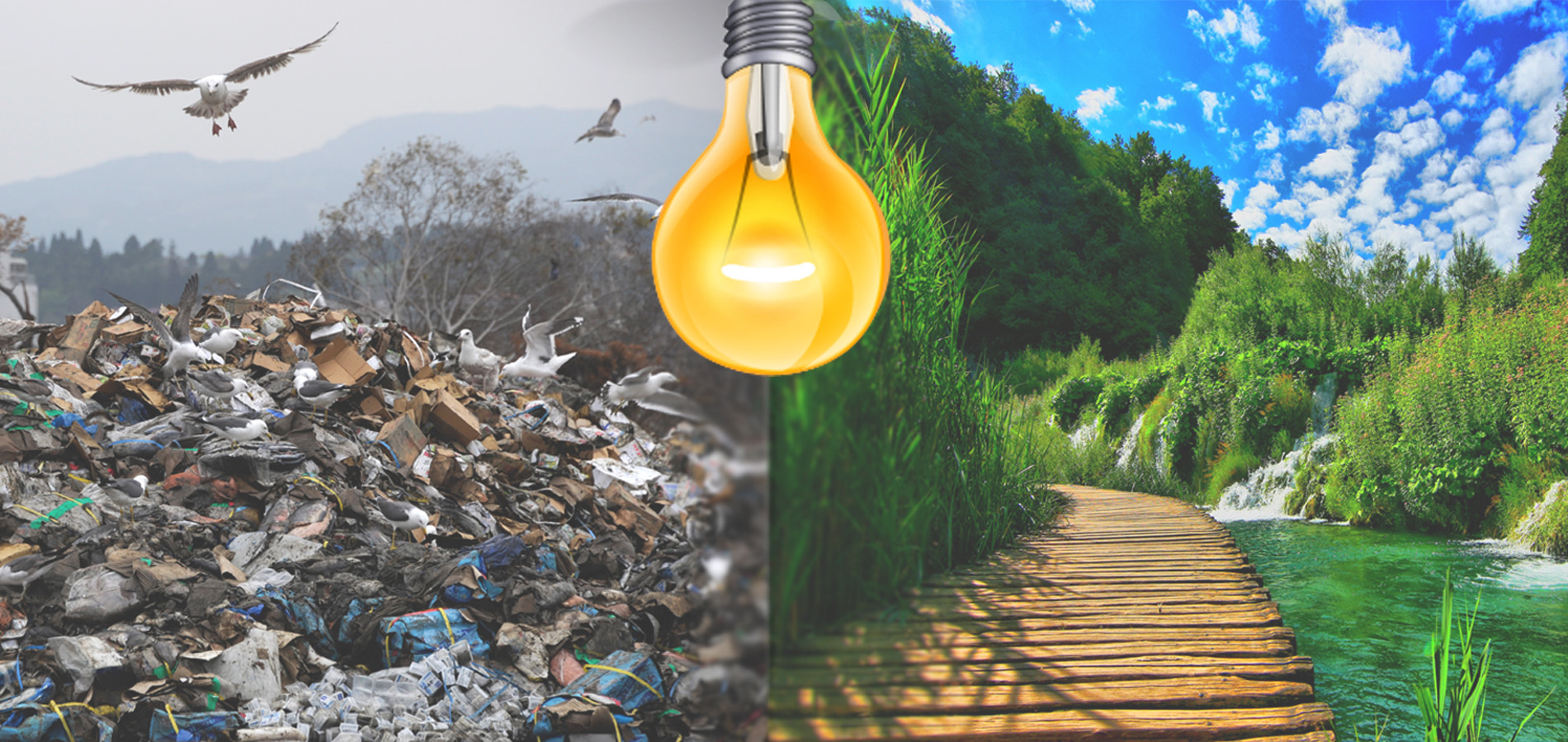 Environmental News – Lagos To Generate Energy From Waste & More