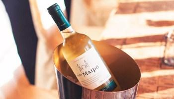 foto de vino