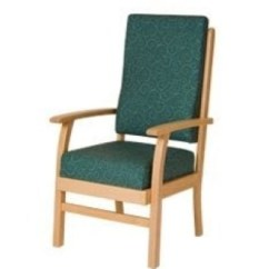Geriatric Chair For Elderly Wooden With Arms Toddler 50 Armchairs Guide How To Choose The Best Ideas On